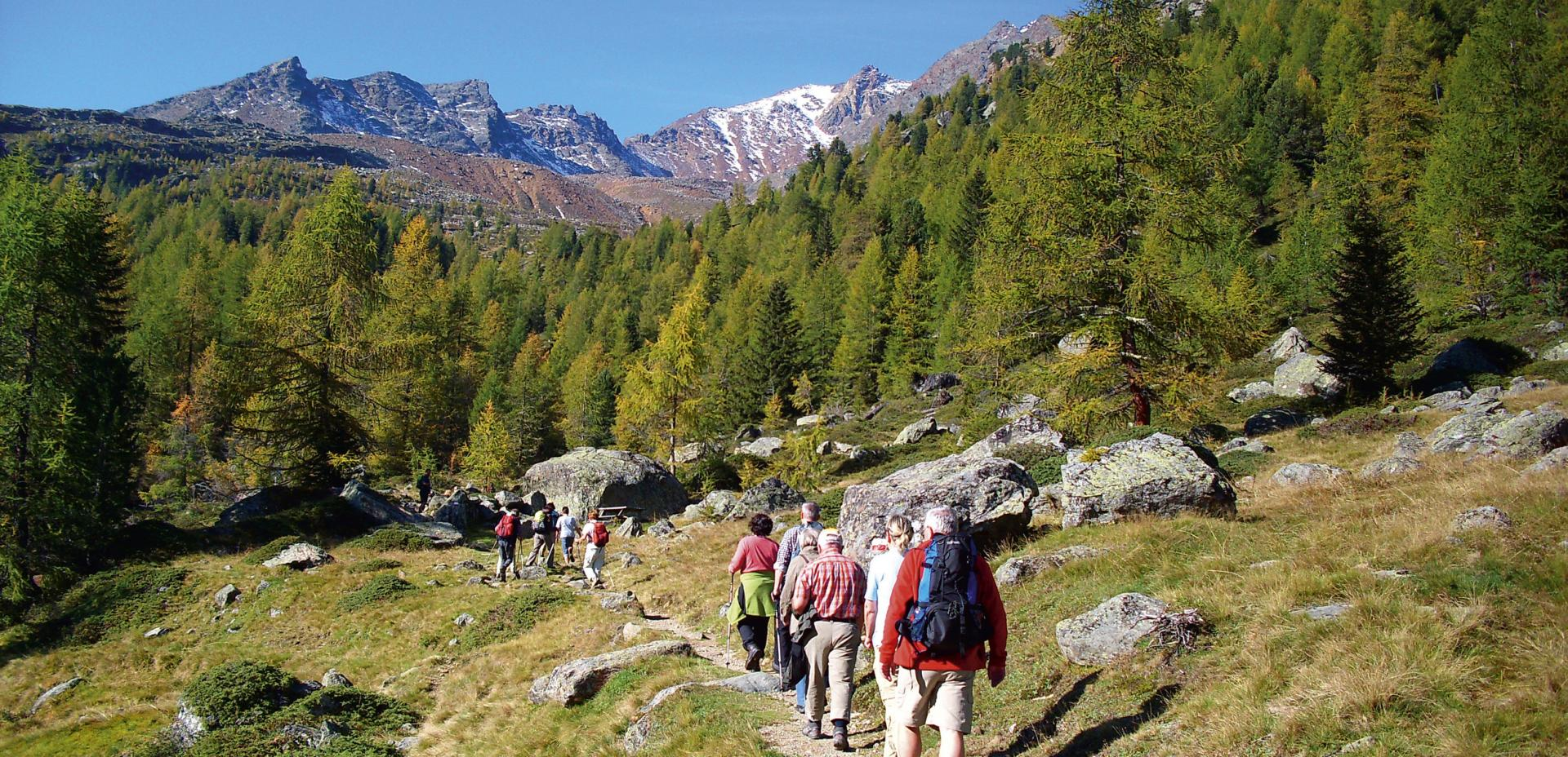 Guided hike in Ultental